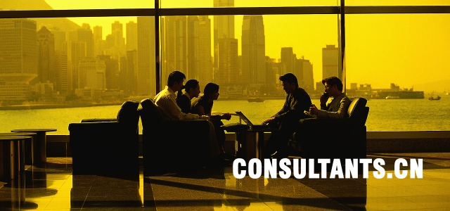 The global consulting industry revenues, including management, human resources and information technology consulting, have been estimated at over US$310 billion for 2007. The projected annual compound growth of the consulting […]